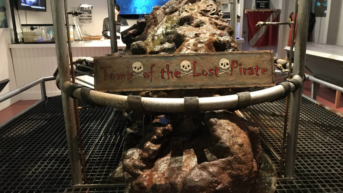 Preserving Artifacts from the Whydah Pirate Shipwreck, Cape Cod
