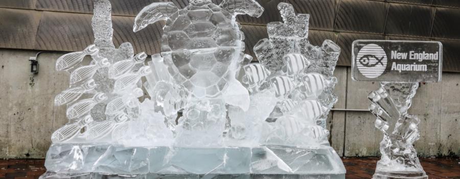 New England Aquarium Ice Sculpture for Boston's First Night